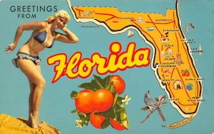 Greetings From Florida Oranges State Map FL