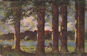 Tucks Forest Scene Forest Symphonies Series 6935