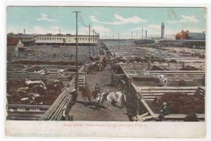 Busy Alley Union Stock Yards Chicago Illinois 1905 postcard