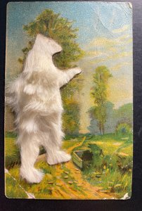 Mint Usa Picture Postcard Teddy Bear From Baltimore