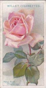 Wills Vintage Cigarette Card Roses A Series 1912 No 21 Mme Abel Chatenay