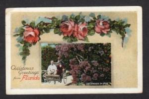 FL Vintage Christmas Greetings from FLORIDA Postcard PC