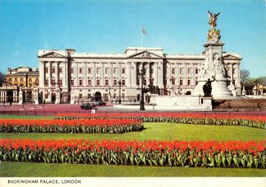 Vintage NEW Old Stock London Postcard, Buckingham Palace CD8