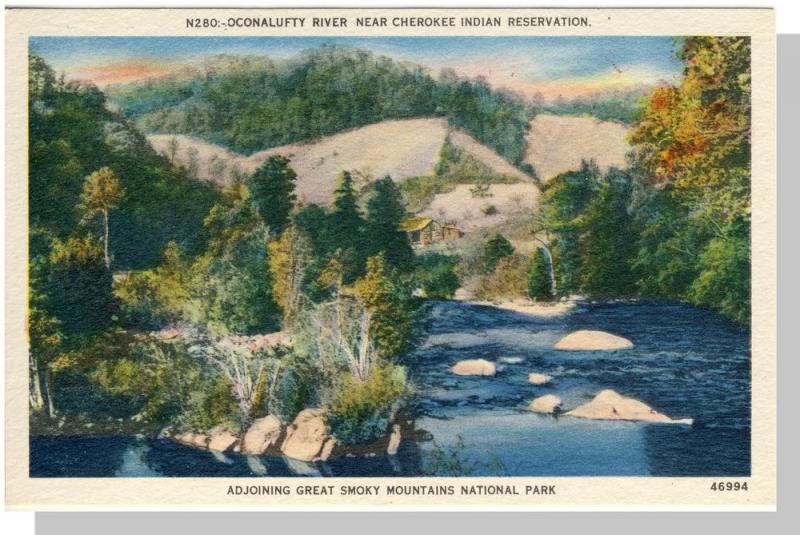 Smoky Mountains Nat'l Park,NC/TN Postcard,Oconalufty,Nr Mnt