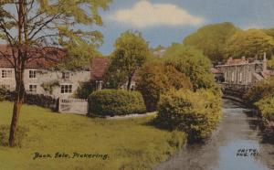 Beck Isle Pickering Mint 1960s Friths Yorkshire Postcard