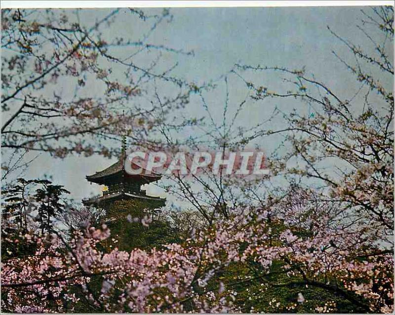 Modern Postcard Yokohama Sankei City on Park is a Private Garden