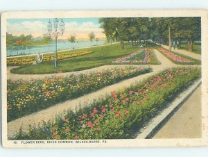 W-border FLOWERBEDS Wilkes-Barre Pennsylvania PA AD7031