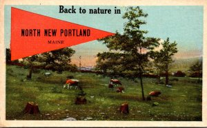 Maine North New Portland Back To Nature 1922 Pennant Series