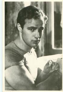 Young Marlon Brando Movie Star Hollywood   Postcard  # 7450