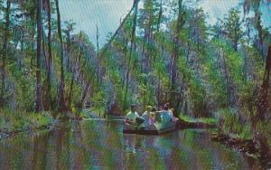Georgia Waycross Boat Tour Okefenokee Swamp Park