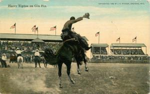C-1910 Gin Fiz Harry Tipton Horses & Flag Stimson postcard 10604 rodeo