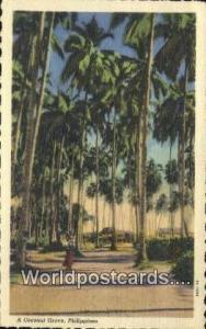 Philippines, Pilipinas Coconut Grove Coconut Grove