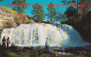 Nebraska Snake River Falls