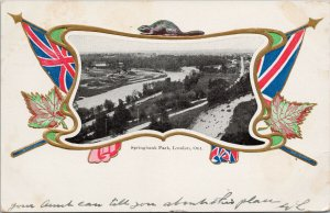 Springbank Park London Ontario ON Patriotic Flag Canada c1904 Postcard F91