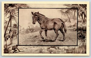Great White Hunter~African Safari Series~Zebra~Jungle Hippo Border~1909 MJ Mintz