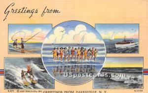 Greetings from Parksville NY Unused