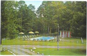 Pool Scene Shady Lawn House Poconos Dingmans Ferry PA Chrome