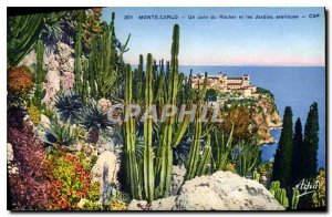 Old Postcard Monta Carlo corner of the Rock and exotic gardens