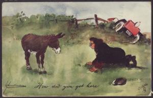 How Did You Get Here? Donkey,Car Comic Postcard