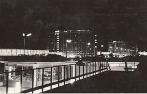 Romania Mamaia Hotel Flora & Doina hotels by night postcard butetrfly stamp