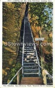 Needle's Eye Chimney Rock Mountain NC Unused