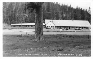 RPPC MINERAL LODGE Mineral, California Tehama County ca 1940s Eastman's Postcard