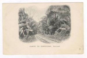 Campo de Honduras   Railroad, 1890s-1905