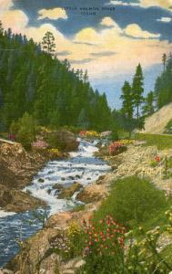 ID - Little Salmon River