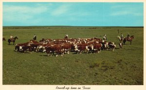 Round Up Time in Texas, TX, Hereford Cattle, 1958 Chrome Vintage Postcard g9079