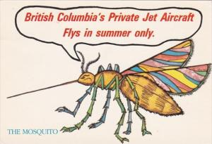 Canada The Mosquito British Columbia's Private Jet Aircraft Flys In Summer On...