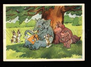 032551 ELEPHANT HARES HIPPOPOTAMUS. Old Funny PC