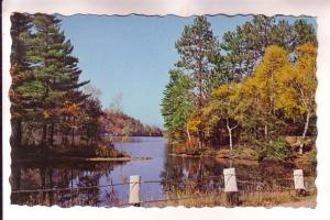 Mill Cove, Inlet of Lake Christopher, Bryant Pond, Maine, Stanley Stevens