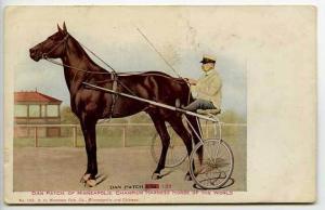Minneapolis MN Dan Patch Harness Horse Champ Postcard