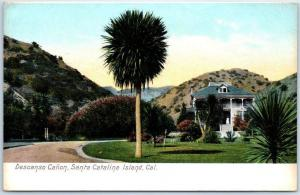Vintage Catalina Island CA Postcard DESCANSO CANYON Mansion Newman 1910s Unuse