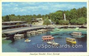 Silver Springs, Florida Postcard     ;     Silver Springs, FL Post Card Silve...
