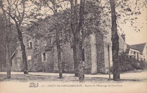 FORET DE FOUNTAINEBLEAU, Seine et Marne, France, Ruines de l'Ermitage de Fran...