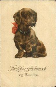 Dachshund Dog Collar & Bow - CONGRATULATIONS c1915 German Postcard