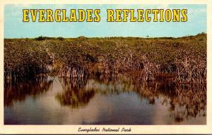 Florida Everglades National Park Everglades Reflections