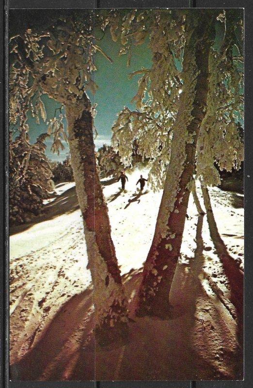 Vermont, Sugarbush Valley - Paradise Trail - [VT-041]