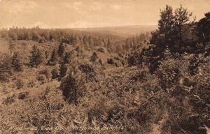Hindhead View from Nutcombe Heights Forest Panorama Postcard
