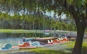 Florida Paddle Boats At Myakka State Park Near Sarasota