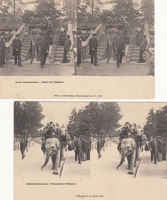 Lot 2 early stereo views France Paris Acclimatization Garden elephant ride