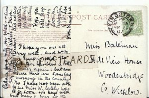 Genealogy Postcard - Bateman - Hill View House - Woodenbridge - Co Wicklow  578B