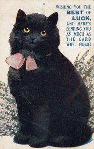 Black Cat , 1910 BEST of LUCK