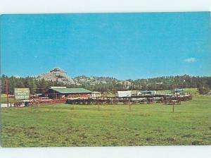 Pre-1980 STORE SHOP SCENE Custer In Black Hills - Near Rapid City SD AF2932