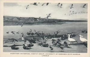 Nebraska Lincoln Migratory Waterfowl Habitat Group University Of Nebraska Sta...