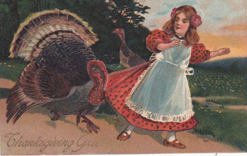 THANKSGIVING; greetings, Wild Turkey chasing girl, gold detail, 1900-10s