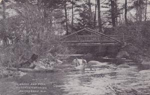 The Brook and Dell, Russell Cottages, Nearsarge, New Hampshire, 00-10s