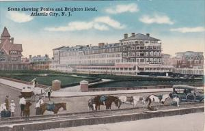 New Jersey Atlantic City Scene Showing Ponies And Brighton Hotel