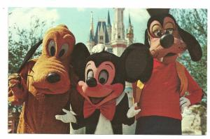Mickey, Pluto, And Goofy at Disney World